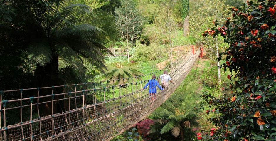 Rope Bridge at Lost Gardens of Heligan